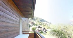 4 pièces 1/2 traversant de 105 m2 avec 25 m2 de balcon